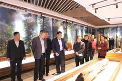 江山市木業產業考察團到探沂鎮參觀考察
