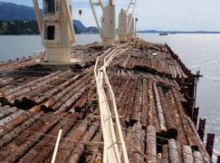 数据显示2018年下半年,中国木材需求放缓