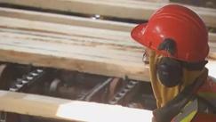 美国房市不景气让加拿大木材公司停产