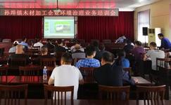 安徽宣城开展孙埠镇木材加工企业环境治理业务培训会