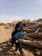 内蒙古乌拉特前旗开展加工木材害虫检疫