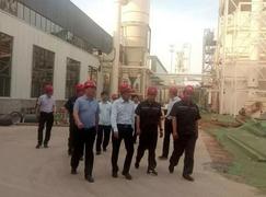 洛陽市領導視察洛寧三環華蘭木業項目