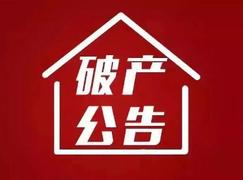 杭州升升全民彩彩票宣告破产