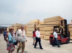<font color=#FF0000>俄罗斯</font>媒体代表走进四川点赞国际木材交易中心