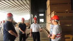 广西来宾市兴宾区区委书记调研<font color=#FF0000>木材</font>加工产业发展情况