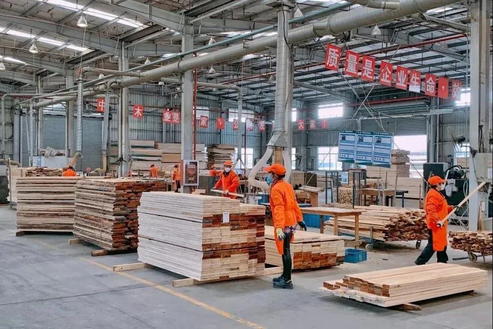 【权威报告】新冠疫情究竟会怎样影响我国木材产业?