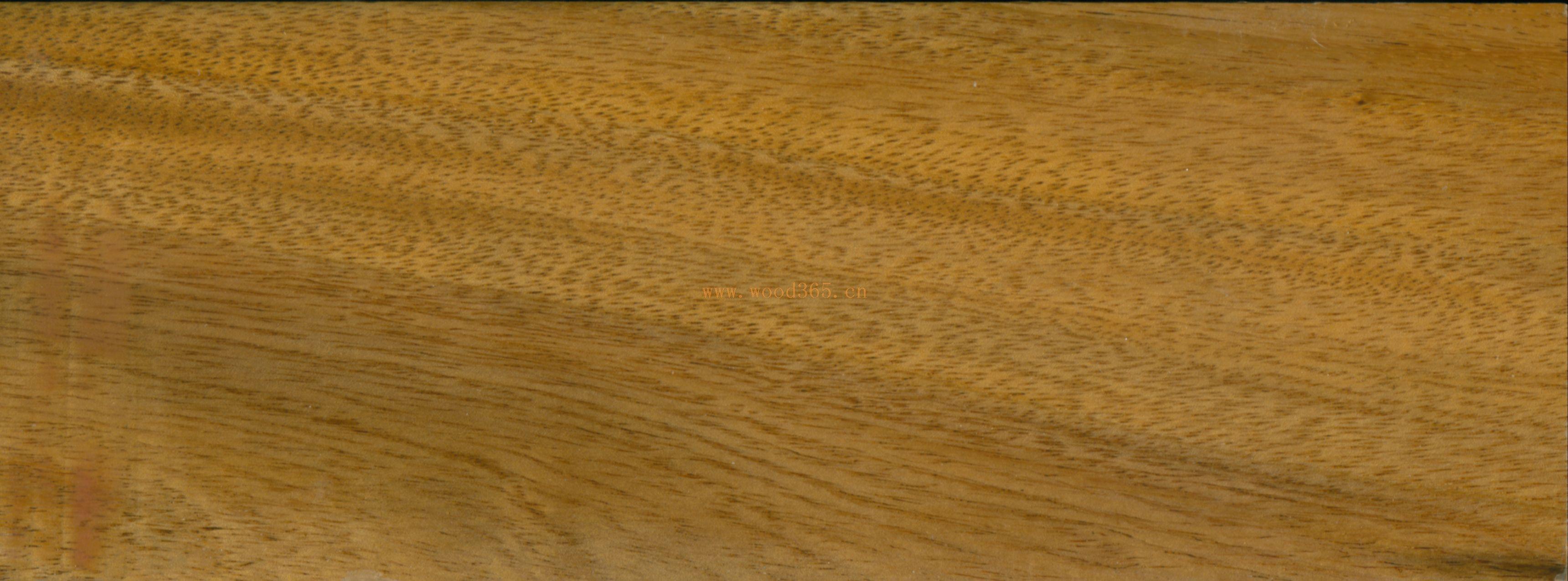 木材种类:雨树 其他名称:南美黑胡桃 英文名称: Saman, Monkey Pod 植物学名称:Pithecellobium Saman ( Samanes Saman) 产地: 南美 规格:粗木枋(湿材) 等级:锯材级,矩形油锯工整切割,不含髓心,略带极少量边材,无缺陷。 尺寸: 厚度: 50mm+,进尺单位为25mm; 宽度:150/300/450mm; 长度:2/1m。 包装:散装在20呎集装箱内, 木枋两端封漆。 价格:CFR CHINA MAIN PORT USD320.