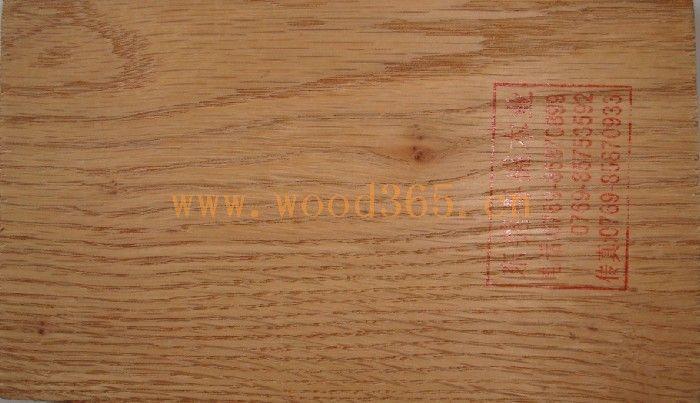 红橡木(红栎木)red oak