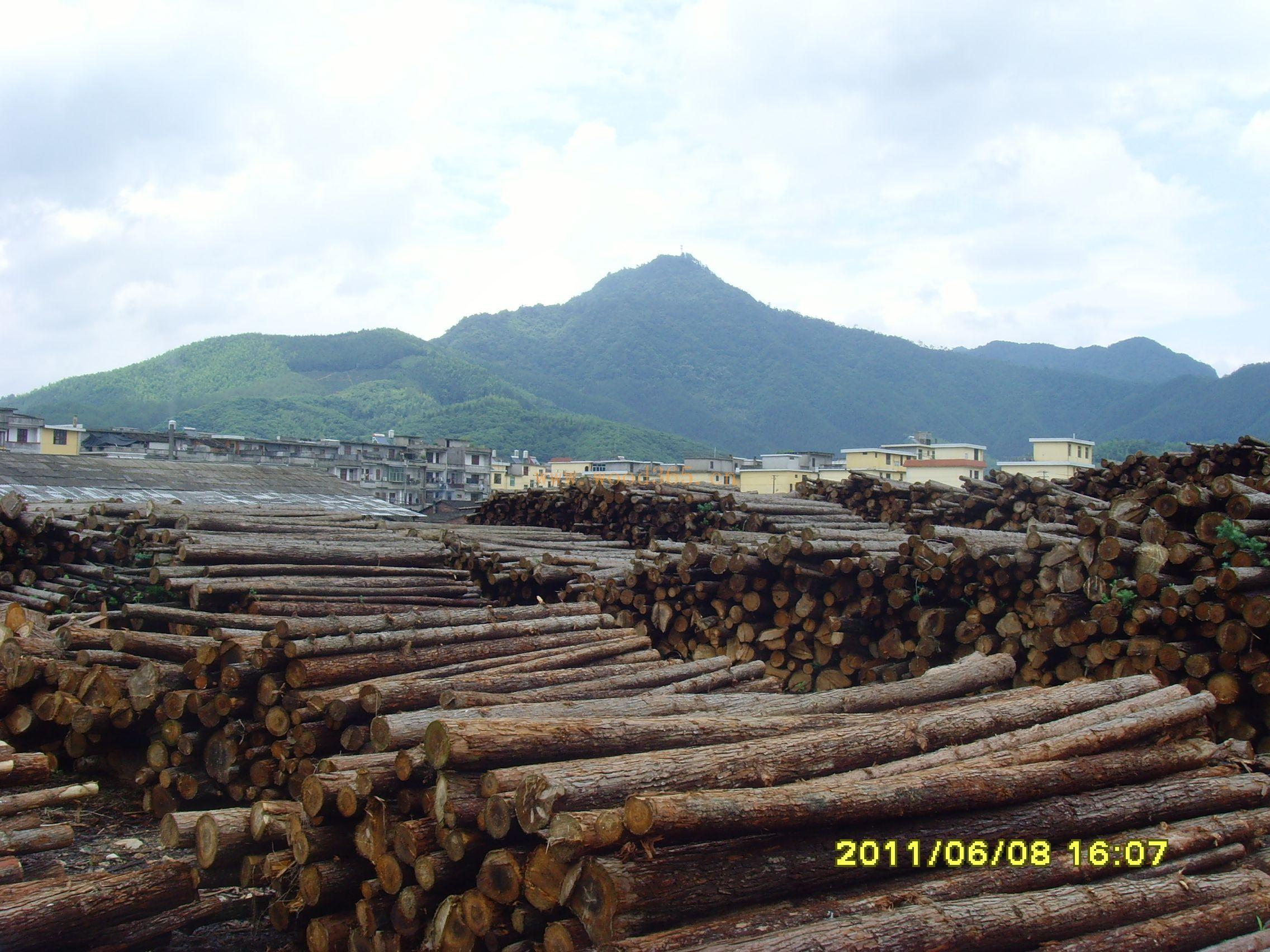 福建省建瓯市黎阳木业有限公司生态板部