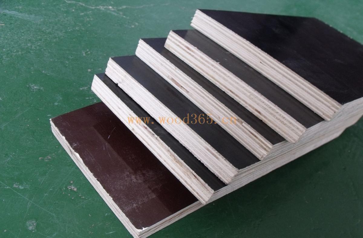 建筑模板-江苏沭阳县大亨木业有限公司