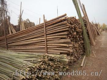 石家庄树木支撑杆,防腐木,防寒布,竹子等绿化用品