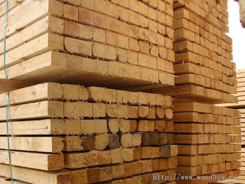 南沙木材原木全包进口报关