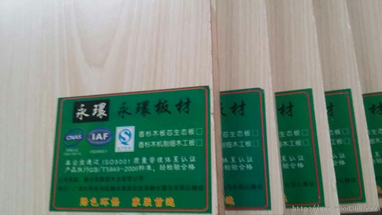 永環生态板/环保生态板材首选