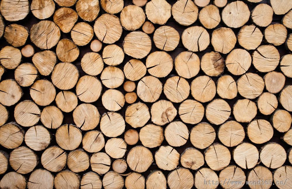 欧洲木材进口报关行