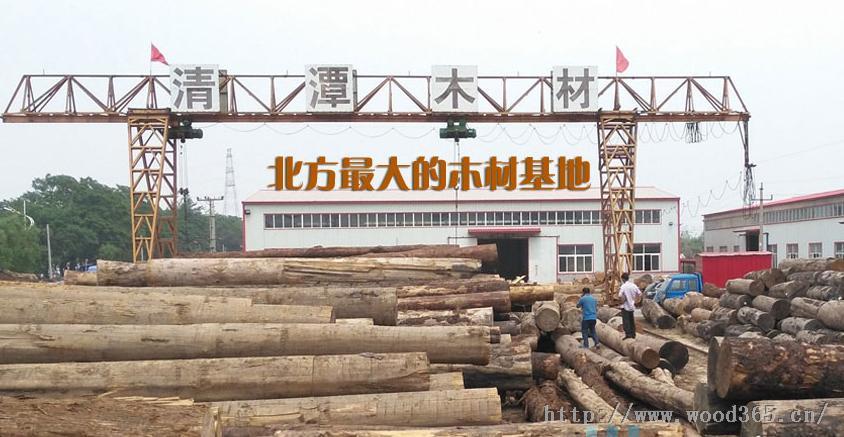 俄罗斯落叶松 板材 木方 辅料