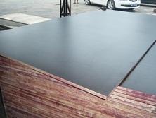 酚醛胶面建筑模板