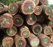 尚高木业美国黑胡桃原木锯材级
