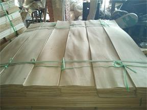 桦木木皮单板
