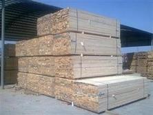 滨州建筑木方生产厂家