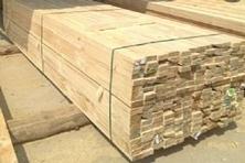 滨州建筑木方批发价格