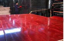 建筑模板 小红板 大红板 红模板 松桉模板