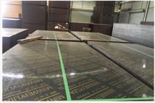 清水模板 覆膜板 松桉清水板 松桉覆膜板 镜面板