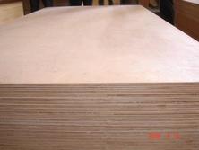 阻燃胶合板 多层芯7层杨木厂家价格