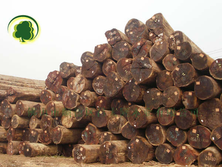 正宗菠萝格 印茄木原材板材 户外园林 可按规格订做