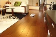 沃尔芬木地板使用年限长保养便利