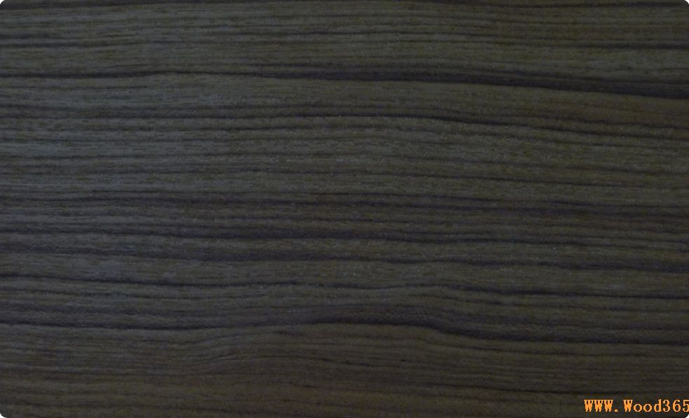 以及紫檀黑檀木皮,地板胚料和玫瑰木纸板等印尼木材。通过多年努力,在印尼建立了自己的工厂及基地,成为国内专营印尼木材企业中的佼佼者,在业界内获得一致好评。 中国木业网作为国内最大的木业垂直专业网站,其丰富的木业信息资源与每天15万人次的访问量等优势,将主动为东莞嘉海贸易有限公司的合作共赢贡献力量,做好服务,推动区域合作向纵深发展。