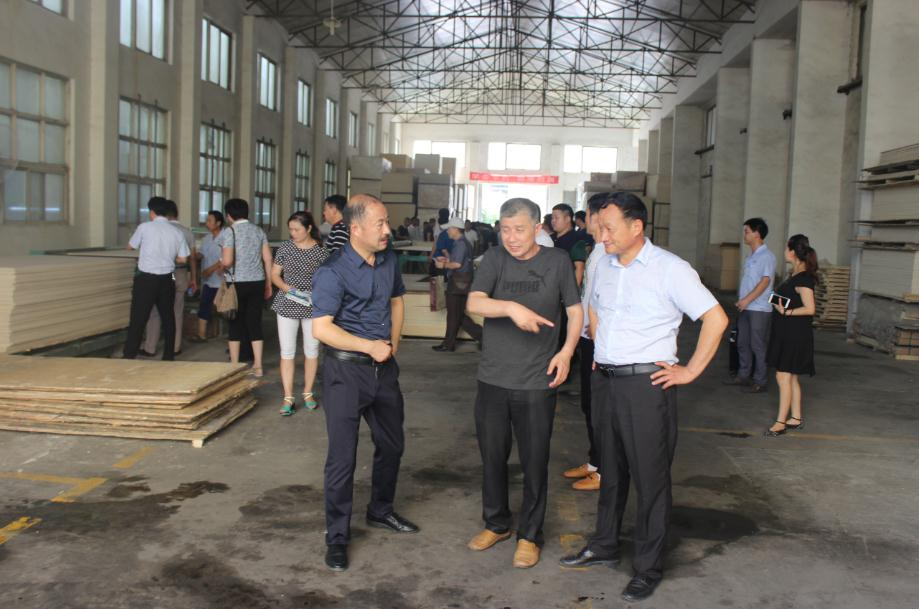 领导河南省集团协感谢等莅临河南宏达家具参明旺泸州家具厂图片