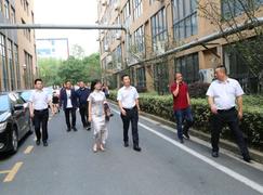 精诚合作,和合共赢——海南装饰协会秘书长王抒一行莅临云峰莫干山考察合作