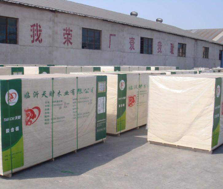 山东临沂天财木业有限公司(国际贸易部)
