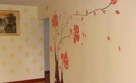 液体墙纸和硅藻泥哪个好?