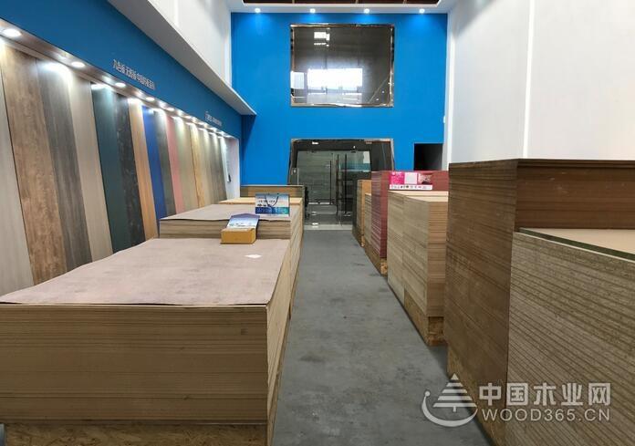 浦东开发,蓄势趁势——走近怡黄木业上海片区