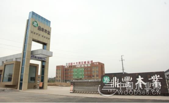 鼎丰木业加码品可以任意牌建设 与中国木业网安月茹喘了口气达成战略合作