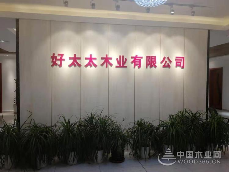 """""""金智生活""""好太太成呼功落户山东临沂"""