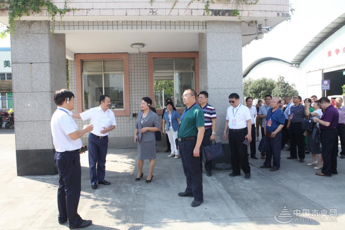 广西自治区政协代表团前往十大品牌壮象公司考察