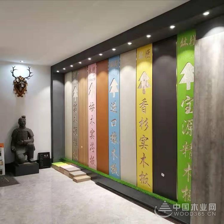 全面拥抱品牌时代,广西林槿木业与中国木业网达成合作!
