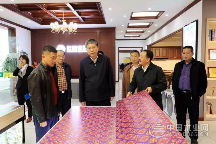 广西自治区副主席费志荣到壮象集团调研