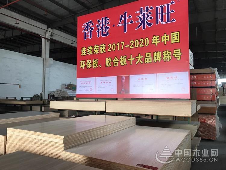 牛莱旺董事长陈明强:产品不断升级 为消费者打造无醛家居