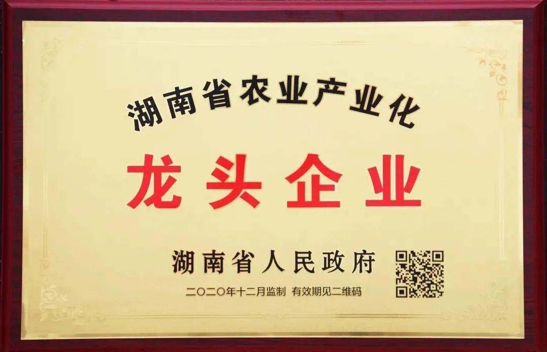 新年伊始,鸿运当头,福湘又获新荣誉!