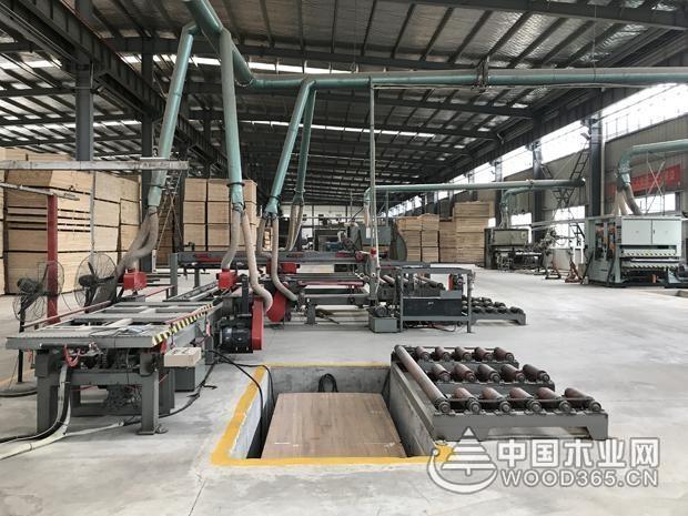 深耕品牌发展 牛莱旺再度携手中国木业网