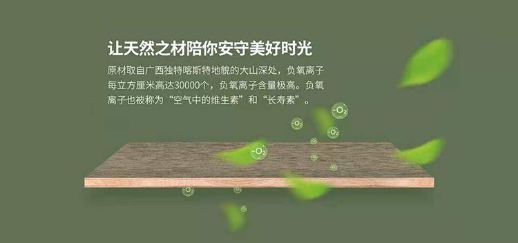 柳州市政协副主席一行到十大板材品牌壮象调研