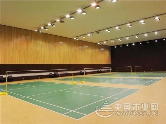 羽毛球馆高度的设置与装修色彩的运用