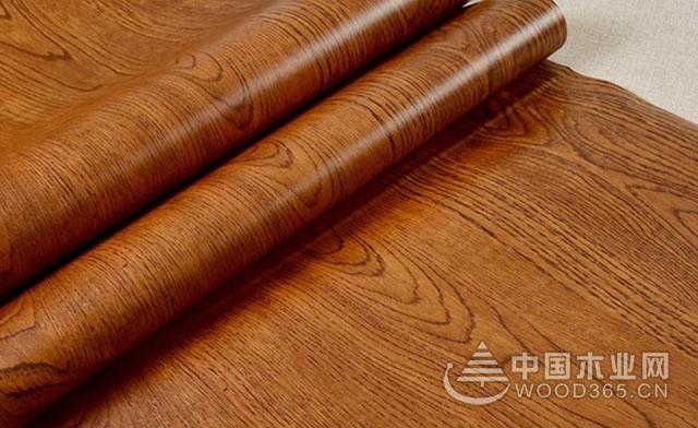 木材解剖构造特征及其价值应用