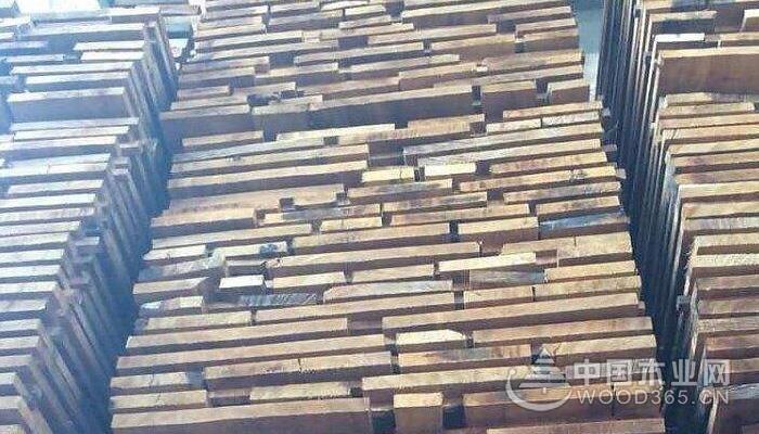 卡斯拉木木材材质和用途