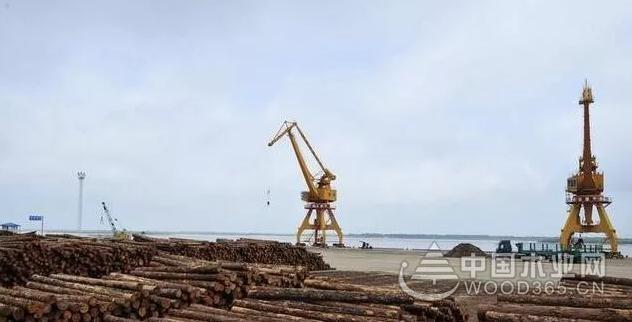 黑龙江抚远远大木材加工园项目正式开工建设