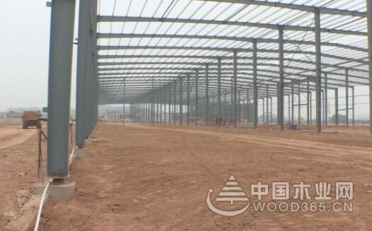 福建华安明劲木业项目将在年底投产