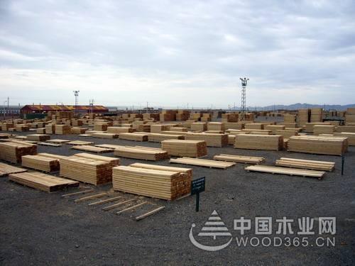 湖北首个木材产业援疆项目将落户阿拉山口市